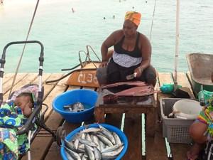 Prodej ryb, Sal